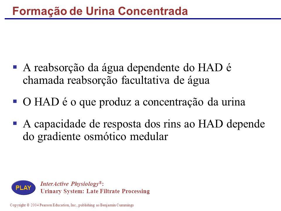 Formação de Urina Concentrada