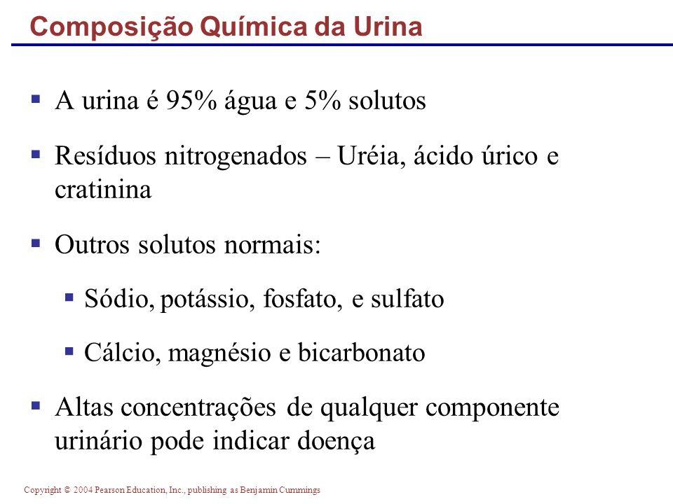 Composição Química da Urina