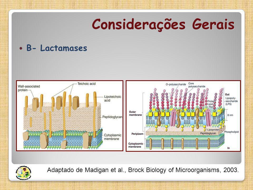 Considerações Gerais Β- Lactamases