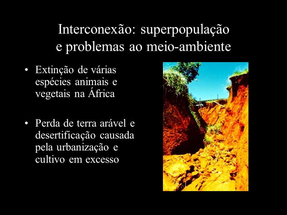 Interconexão: superpopulação e problemas ao meio-ambiente