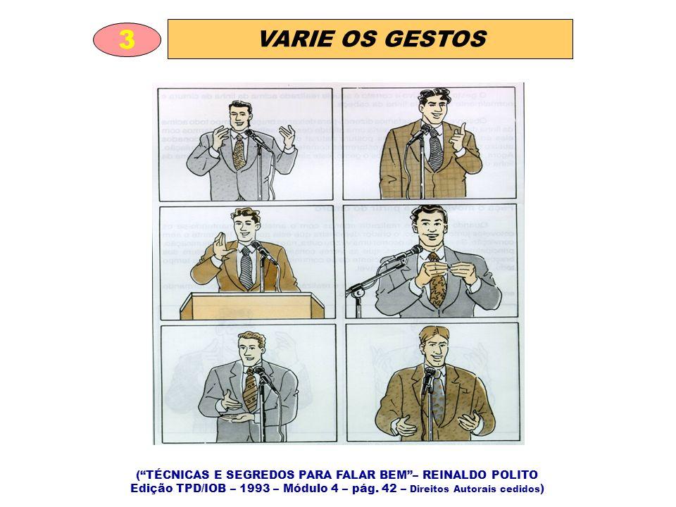 ( TÉCNICAS E SEGREDOS PARA FALAR BEM – REINALDO POLITO