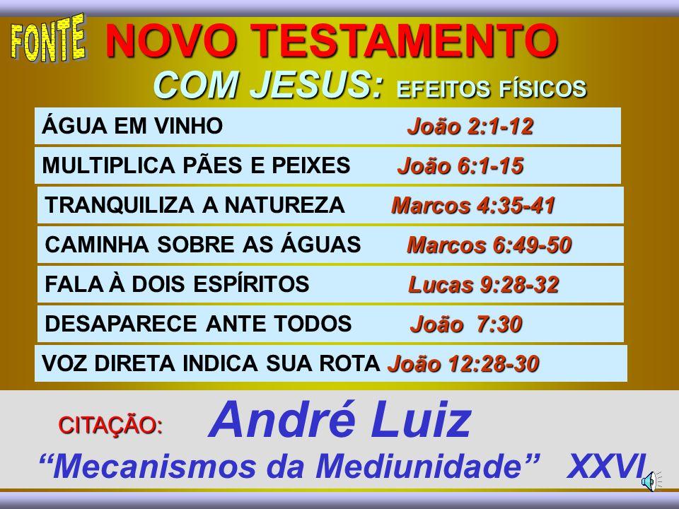 COM JESUS: EFEITOS FÍSICOS André Luiz Mecanismos da Mediunidade XXVI