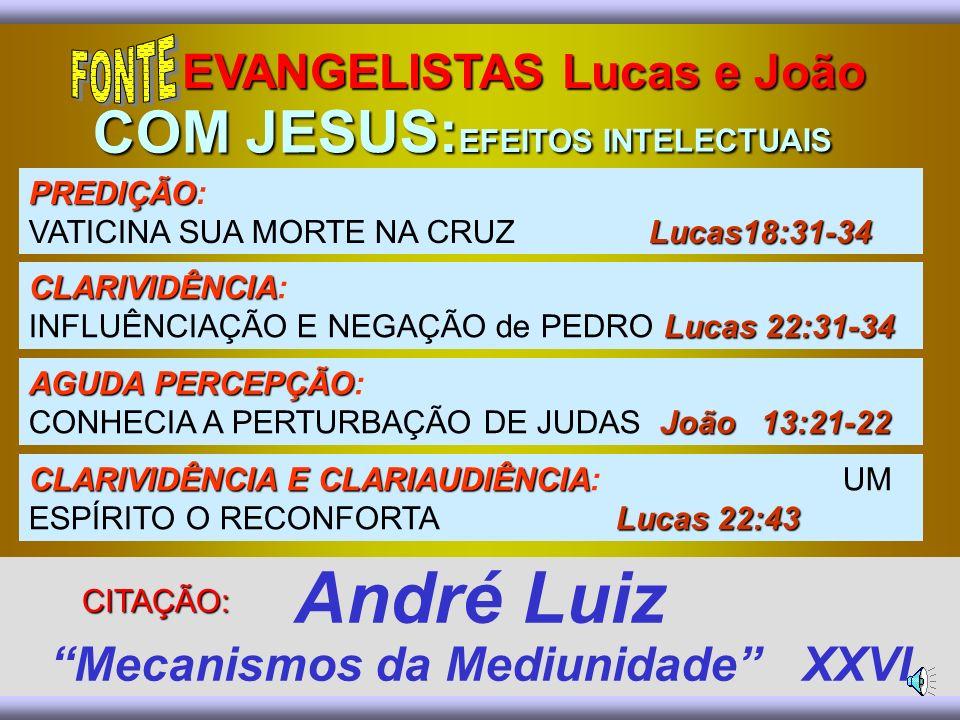 André Luiz Mecanismos da Mediunidade XXVI