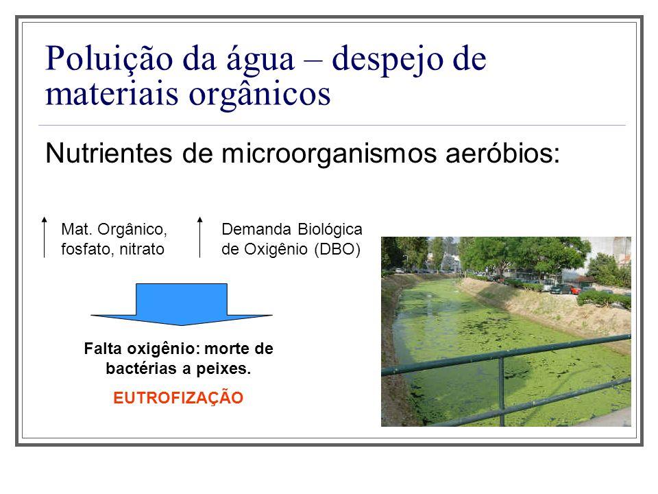 Poluição da água – despejo de materiais orgânicos