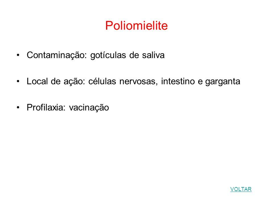 Poliomielite Contaminação: gotículas de saliva
