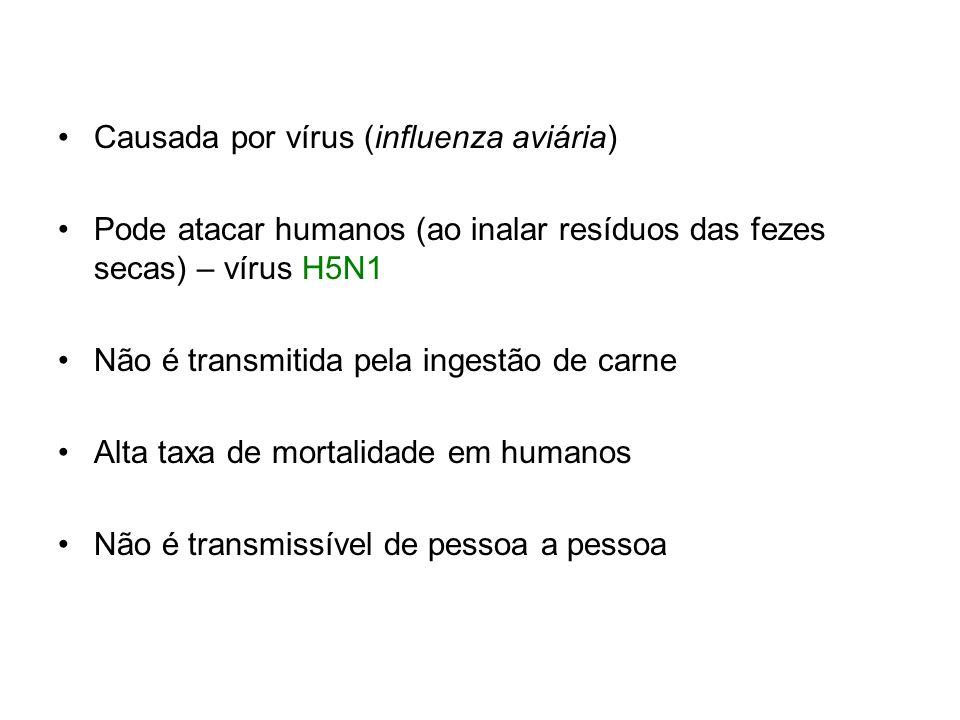 Causada por vírus (influenza aviária)