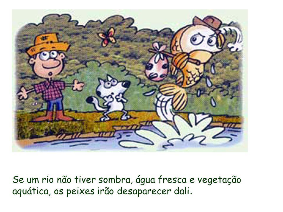Se um rio não tiver sombra, água fresca e vegetação