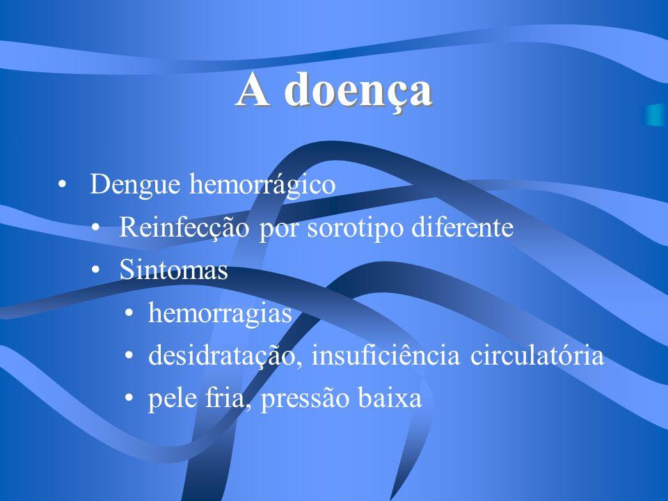 A doença Dengue hemorrágico Reinfecção por sorotipo diferente Sintomas