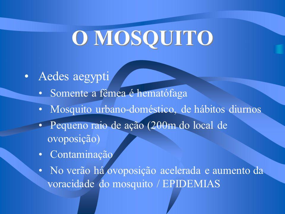O MOSQUITO Aedes aegypti Somente a fêmea é hematófaga