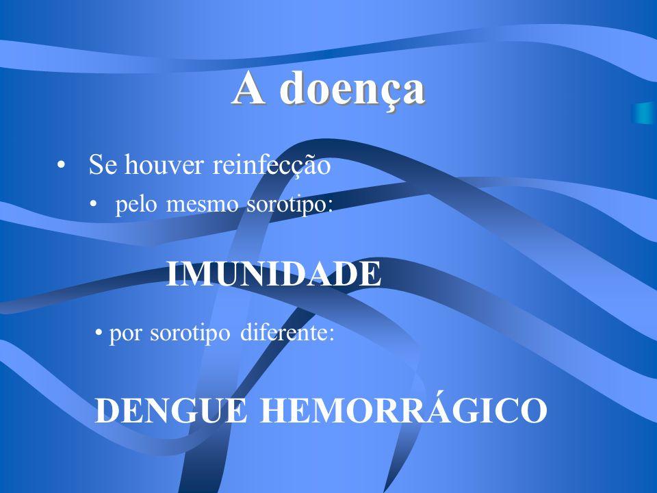 A doença IMUNIDADE DENGUE HEMORRÁGICO Se houver reinfecção