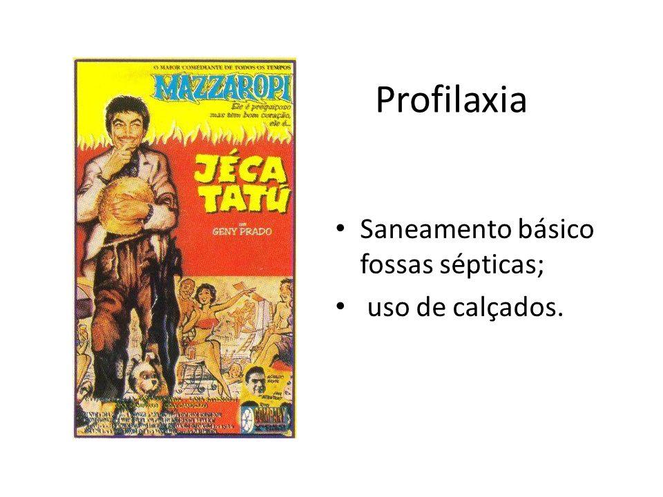 Profilaxia Saneamento básico fossas sépticas; uso de calçados.
