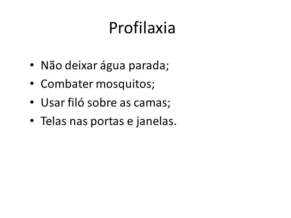 Profilaxia Não deixar água parada; Combater mosquitos;