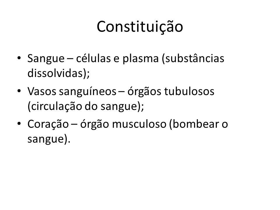 Constituição Sangue – células e plasma (substâncias dissolvidas);