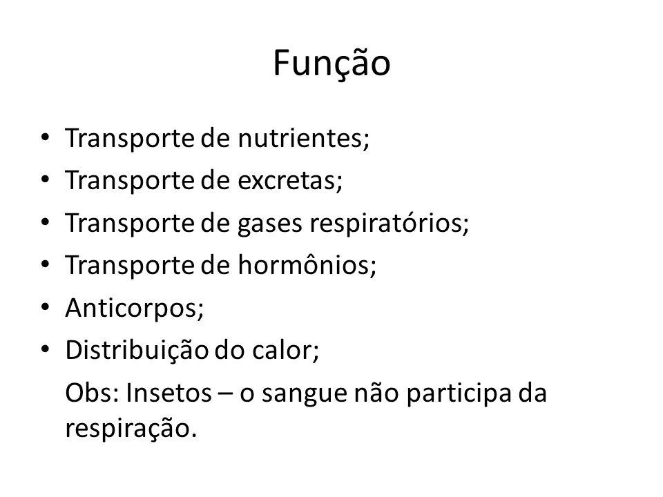 Função Transporte de nutrientes; Transporte de excretas;