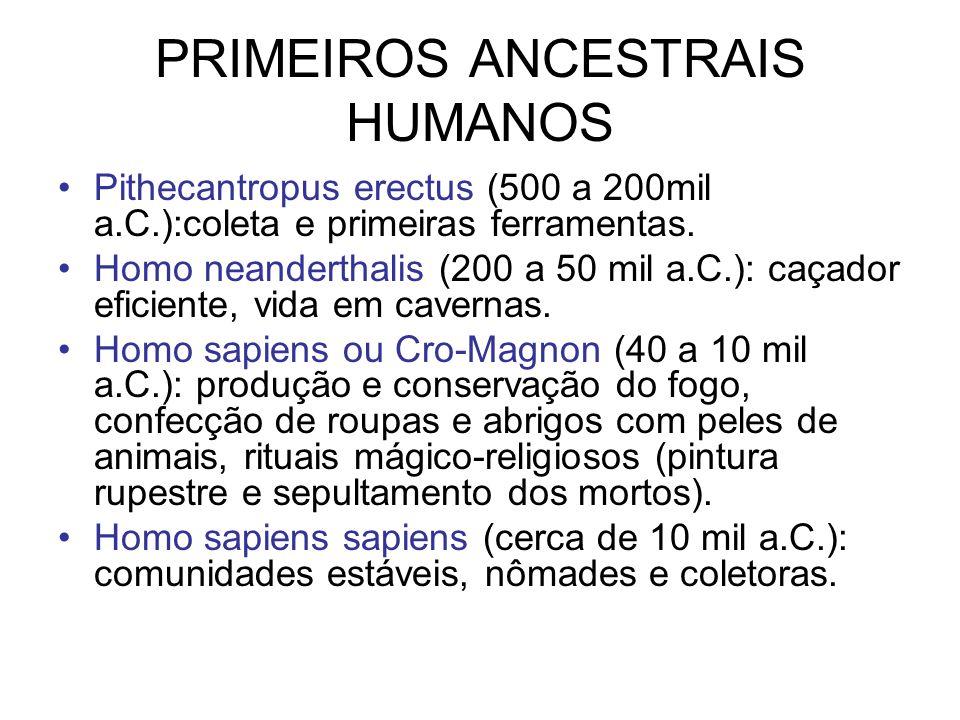 PRIMEIROS ANCESTRAIS HUMANOS