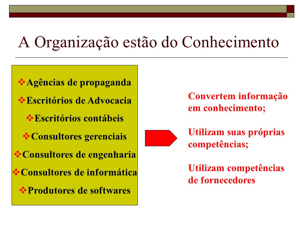 A Organização estão do Conhecimento