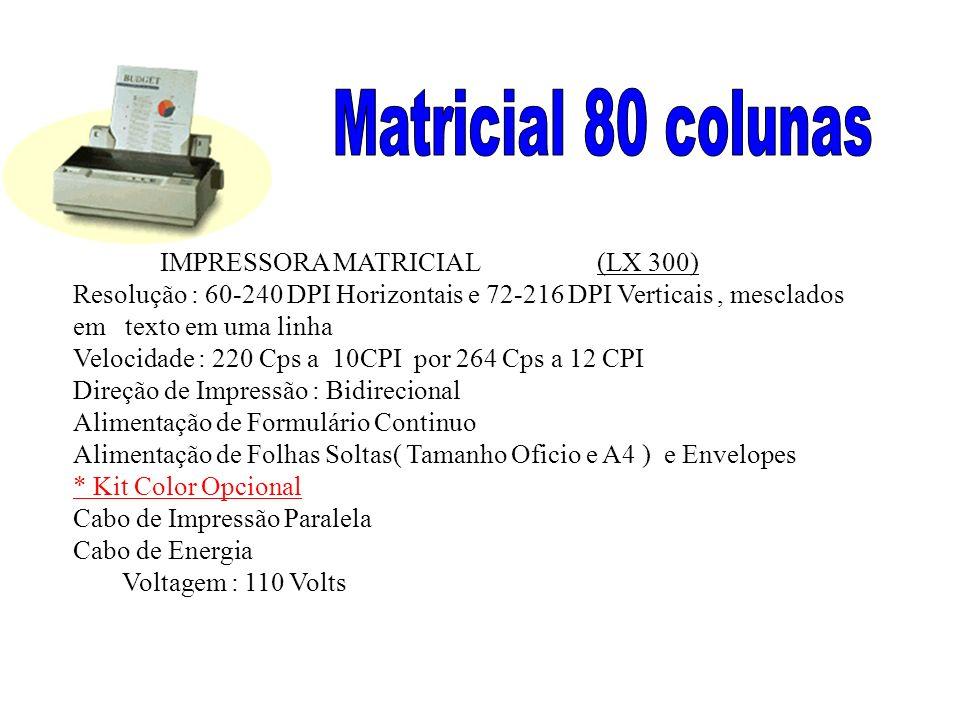 Matricial 80 colunas IMPRESSORA MATRICIAL (LX 300)