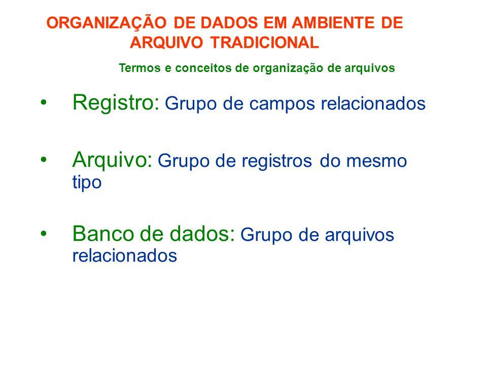 ORGANIZAÇÃO DE DADOS EM AMBIENTE DE ARQUIVO TRADICIONAL