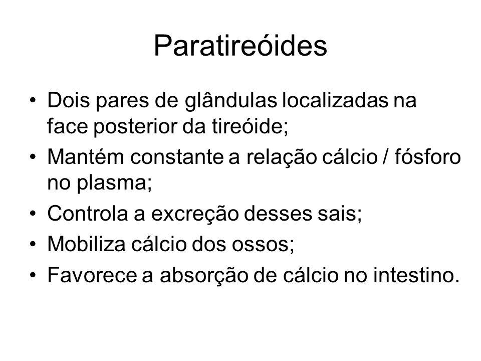 Paratireóides Dois pares de glândulas localizadas na face posterior da tireóide; Mantém constante a relação cálcio / fósforo no plasma;