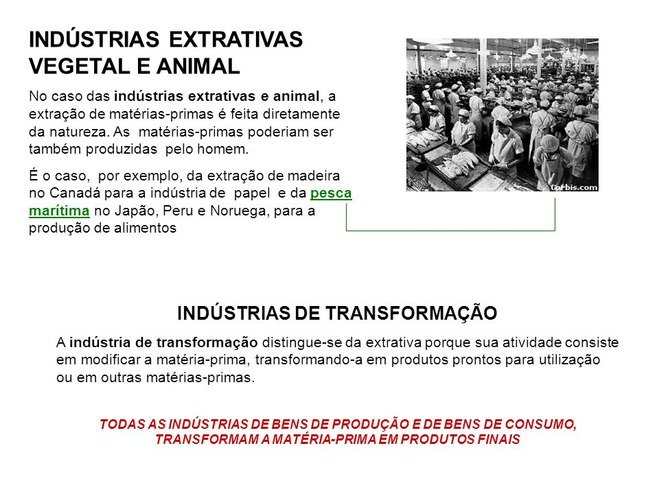 INDÚSTRIAS DE TRANSFORMAÇÃO