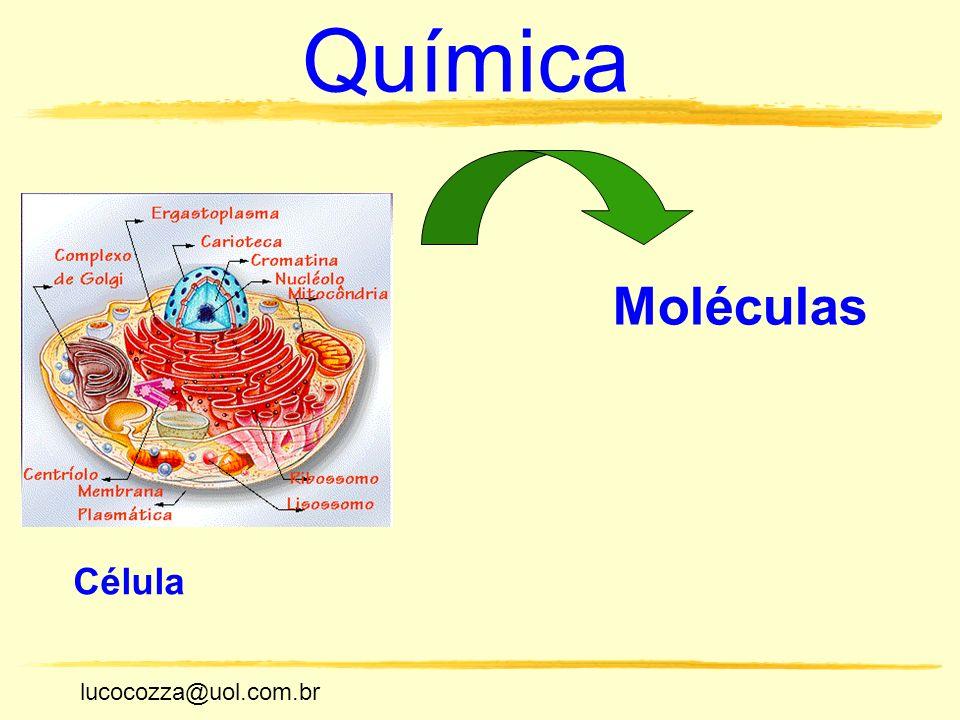 Química Moléculas Célula lucocozza@uol.com.br