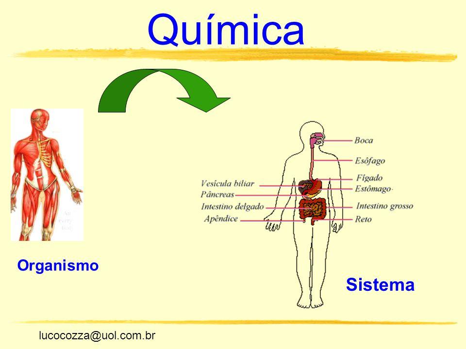 Química Organismo Sistema lucocozza@uol.com.br