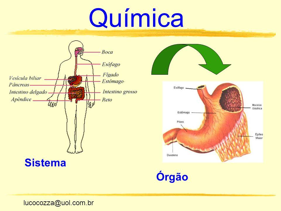 Química Sistema Órgão lucocozza@uol.com.br