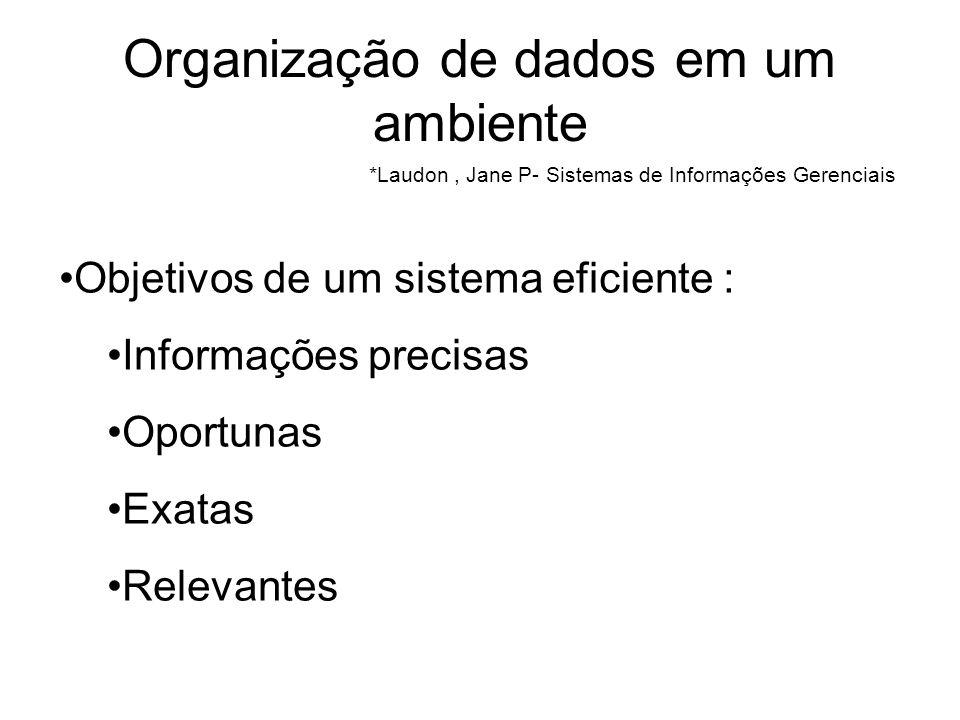 Organização de dados em um ambiente
