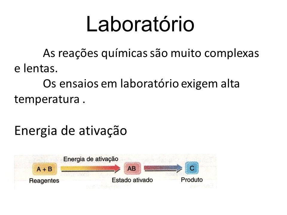 LaboratórioAs reações químicas são muito complexas e lentas.