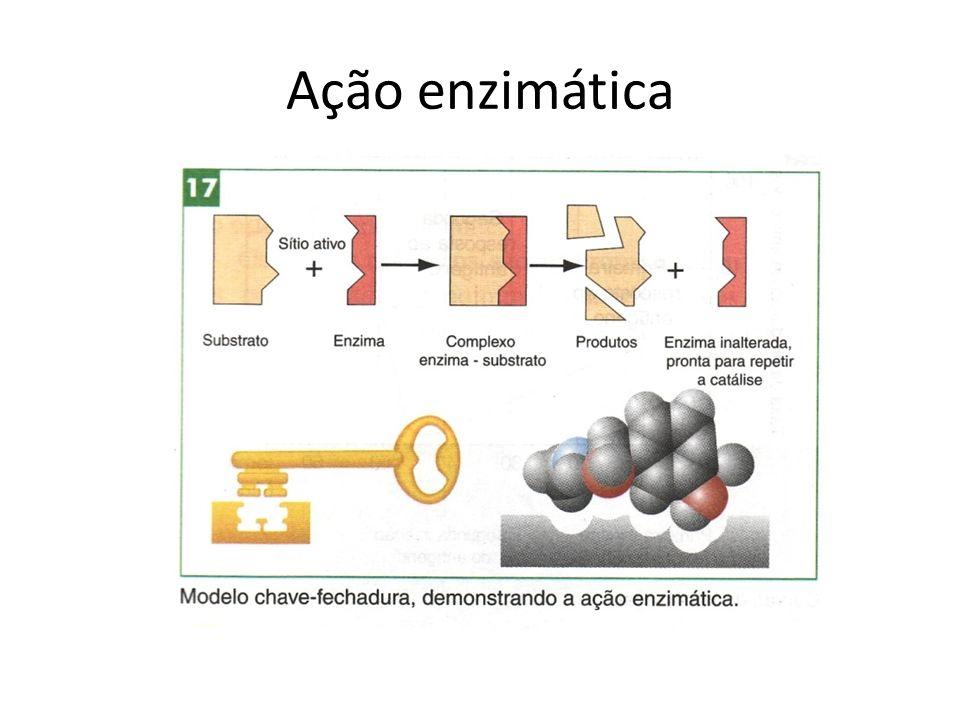 Ação enzimática