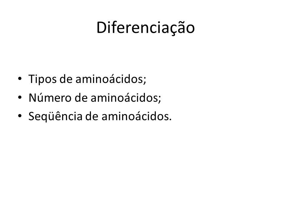 Diferenciação Tipos de aminoácidos; Número de aminoácidos;