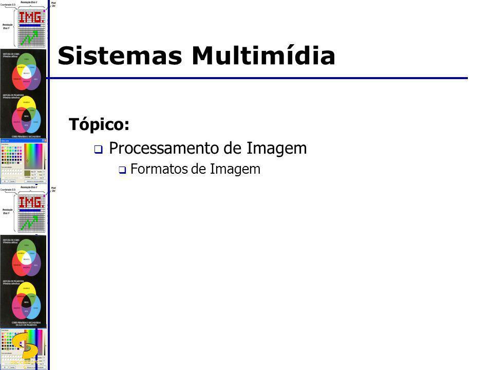 Sistemas Multimídia Tópico: Processamento de Imagem Formatos de Imagem