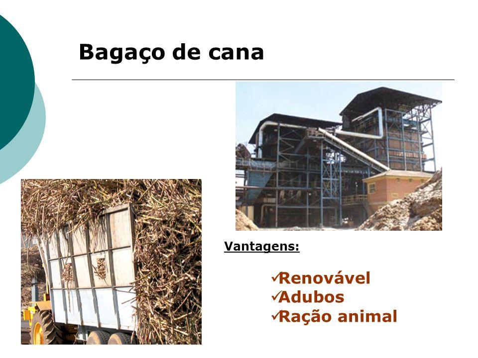Bagaço de cana Vantagens: Renovável Adubos Ração animal