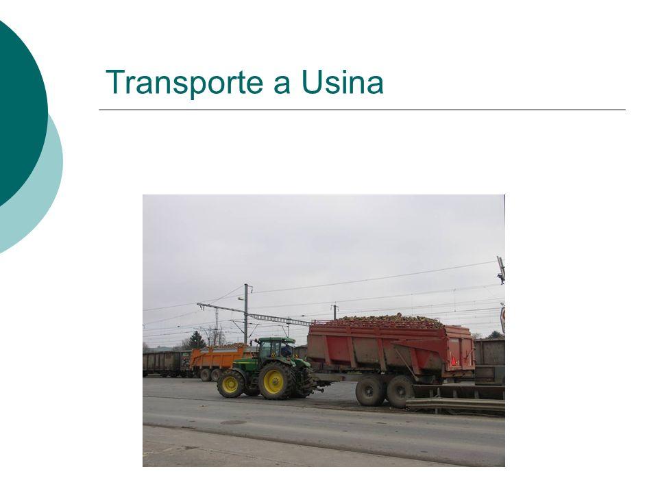 Transporte a Usina