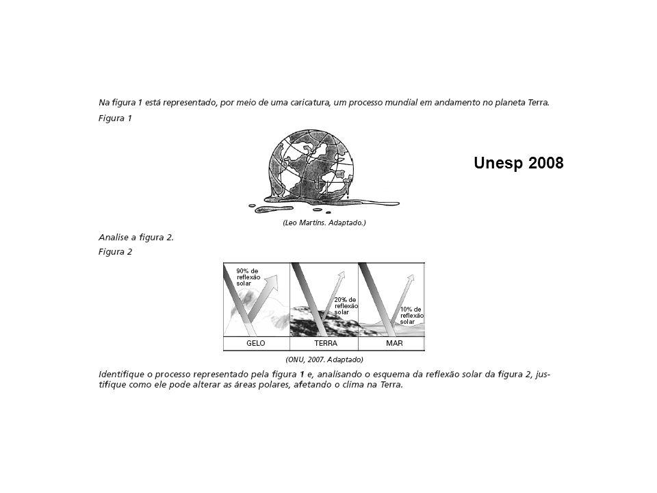 Unesp 2008