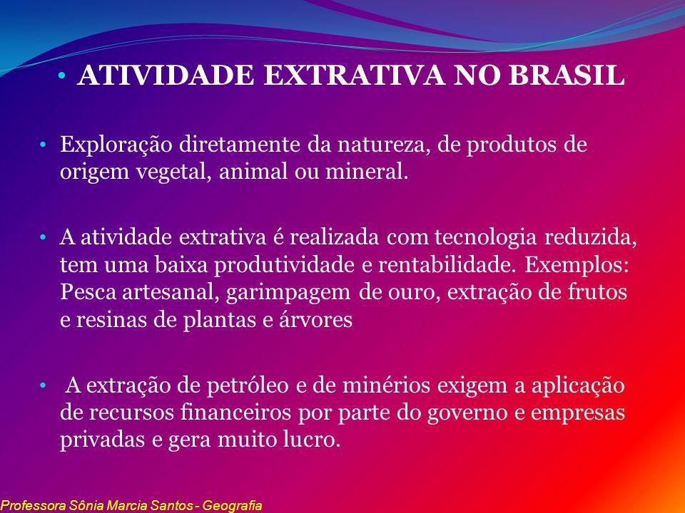 ATIVIDADE EXTRATIVA NO BRASIL