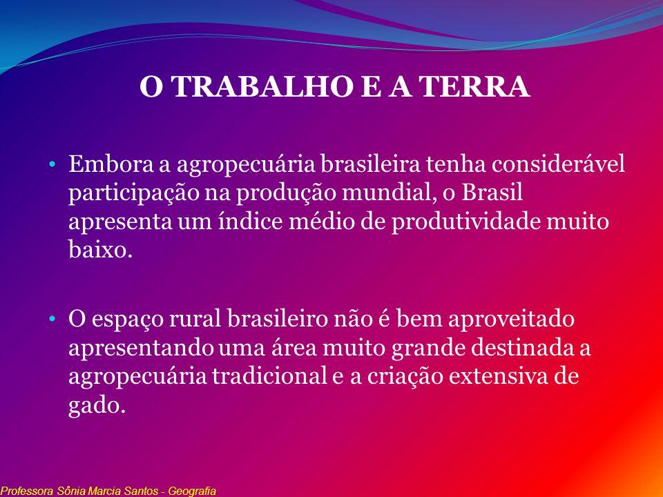 O TRABALHO E A TERRA