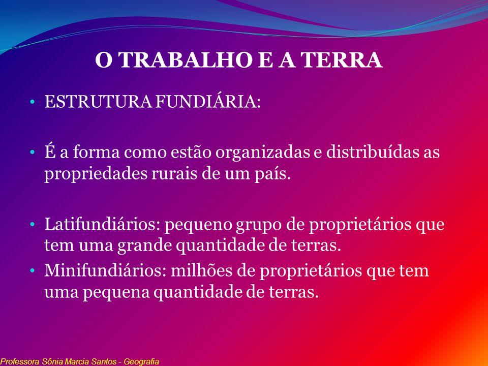 O TRABALHO E A TERRA ESTRUTURA FUNDIÁRIA: