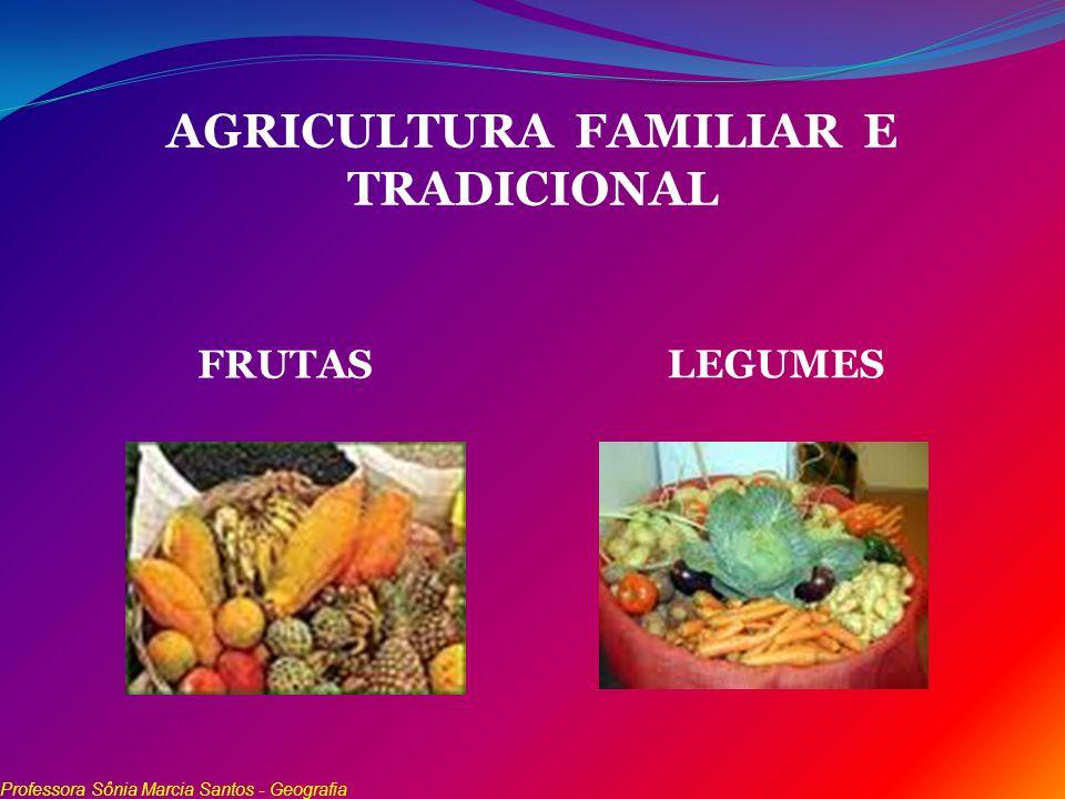 AGRICULTURA FAMILIAR E TRADICIONAL