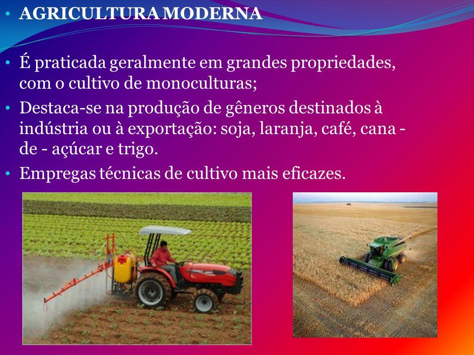 AGRICULTURA MODERNA É praticada geralmente em grandes propriedades, com o cultivo de monoculturas;
