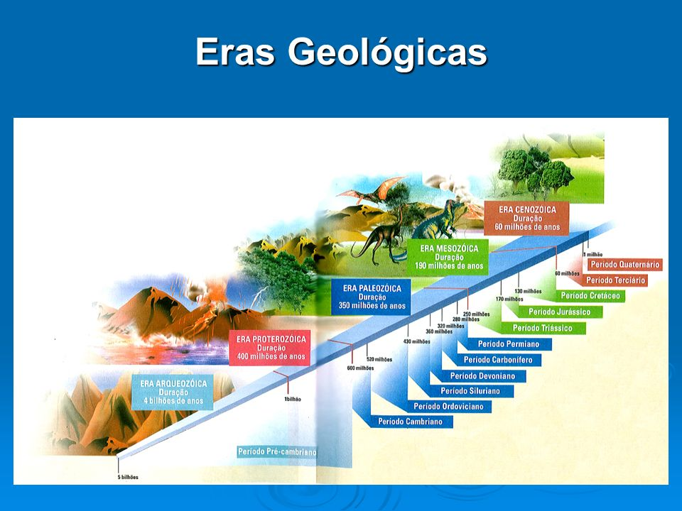 Eras Geológicas 6