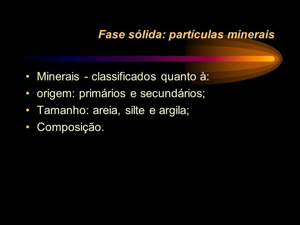 Fase sólida: partículas minerais