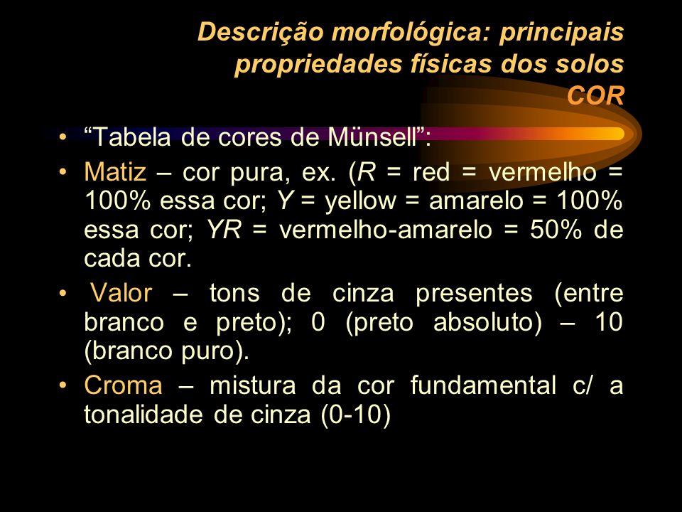 Descrição morfológica: principais propriedades físicas dos solos COR