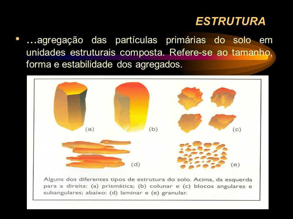 ESTRUTURA...agregação das partículas primárias do solo em unidades estruturais composta.