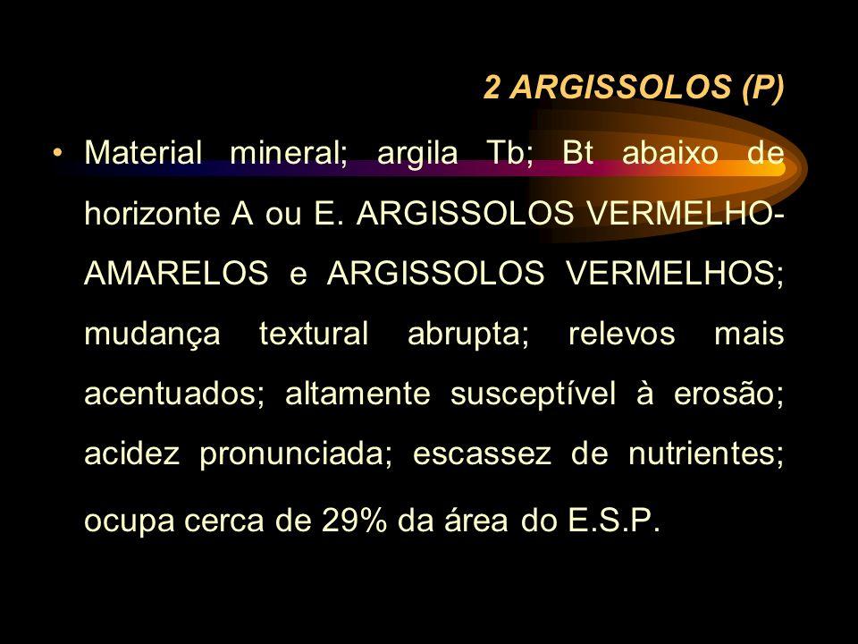 2 ARGISSOLOS (P)