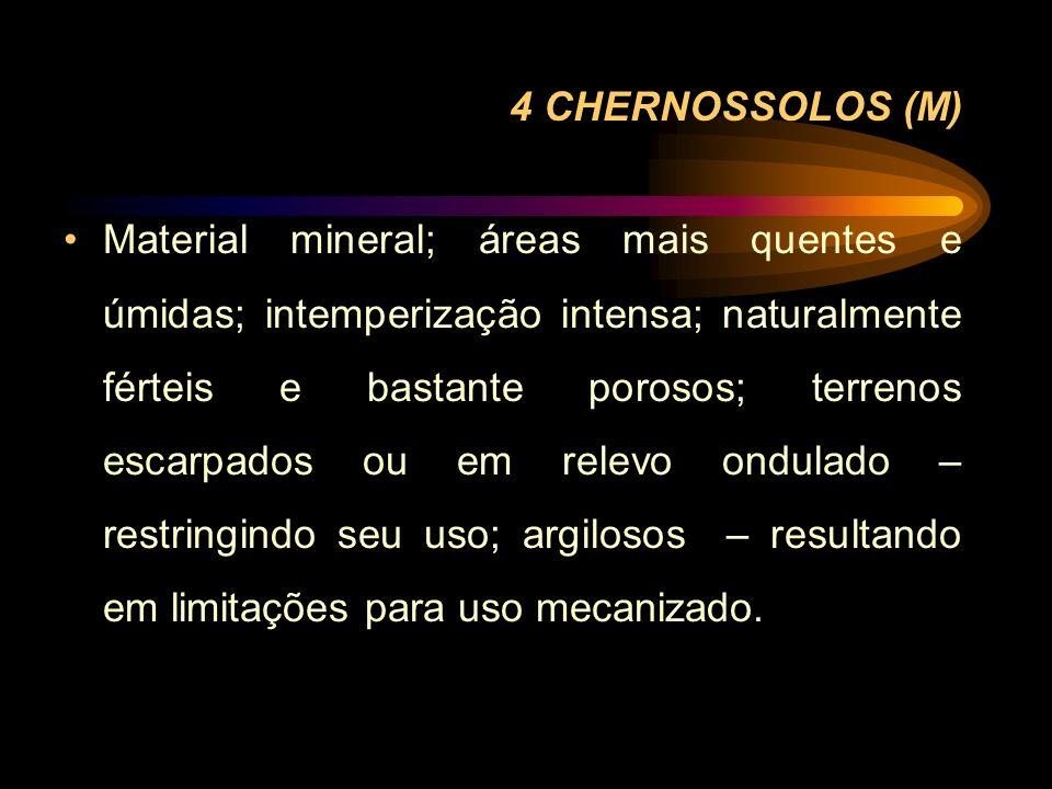 4 CHERNOSSOLOS (M)