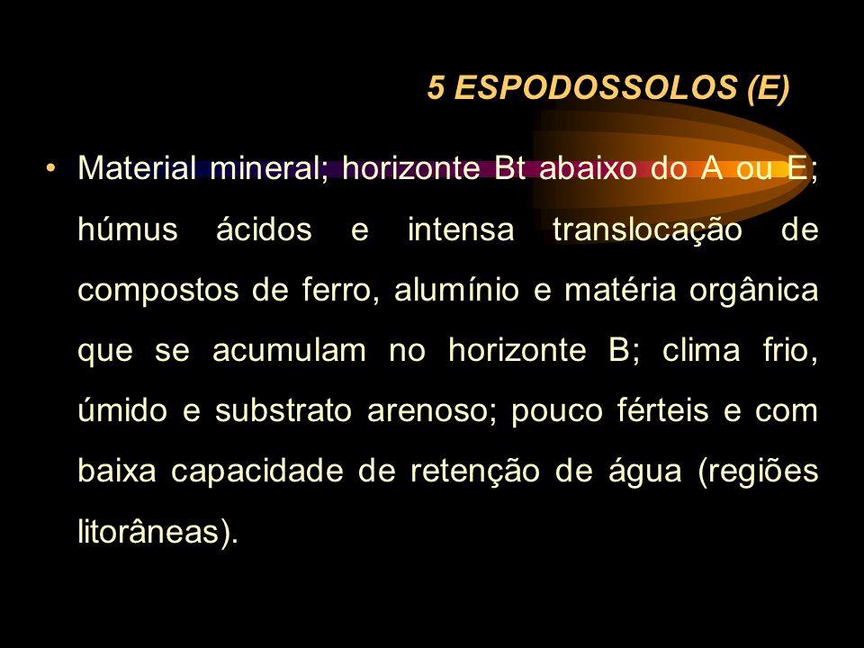 5 ESPODOSSOLOS (E)