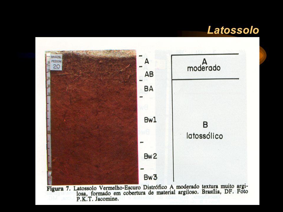 Latossolo