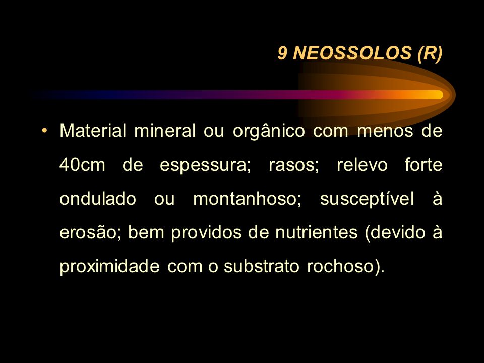 9 NEOSSOLOS (R)