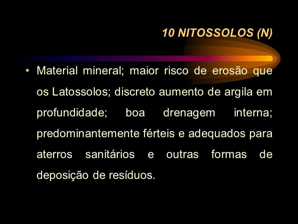 10 NITOSSOLOS (N)
